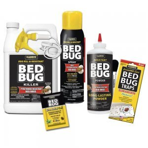 black_label_harris_bed_bug
